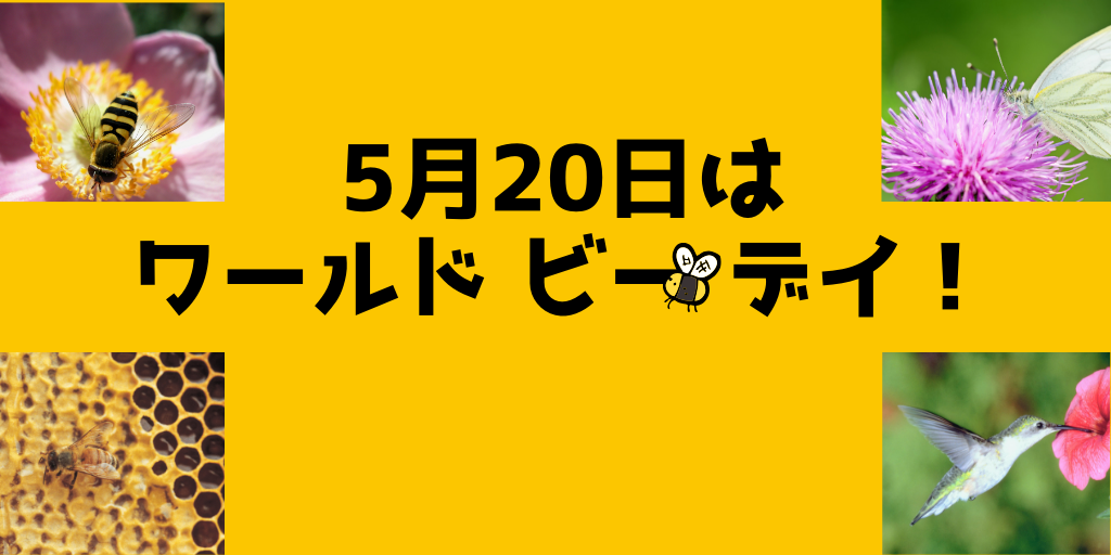 World Bee Day 5月20日